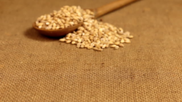 Approximation of a wooden spoon overflowing with pearl barley grains, lying on burlap video