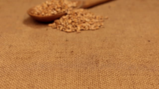 Approximation of a wooden spoon overflowing with wheat grains, lying on burlap video