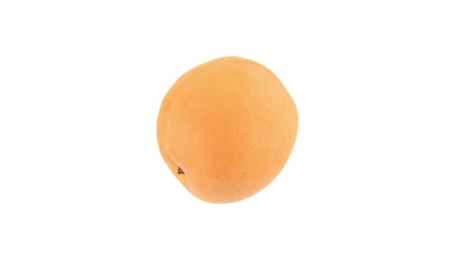 HD LOOP: Apricot video