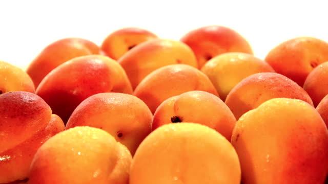 apricots video