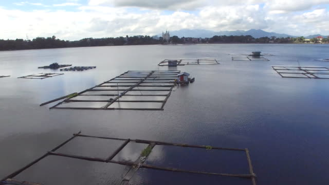 aquaculture harnessing Sampaloc lake potential to provide food for domestic consumption. Shanty and bamboo structures built in the middle of the lake, video