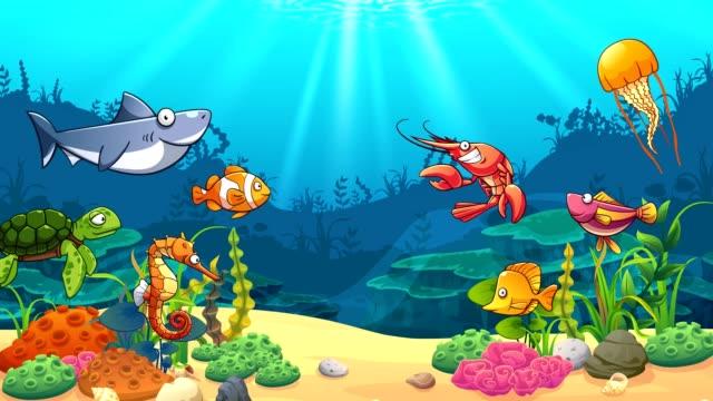 aquatic animals in underwater world - under the sea fish video stock e b–roll