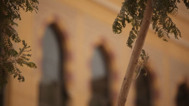 stockvideo's en b-roll-footage met arabesque vensterbogen - riyad