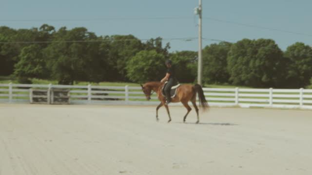 vidéos et rushes de arabian horse ranch avec trainer training horses 4k série vidéo - dressage équestre