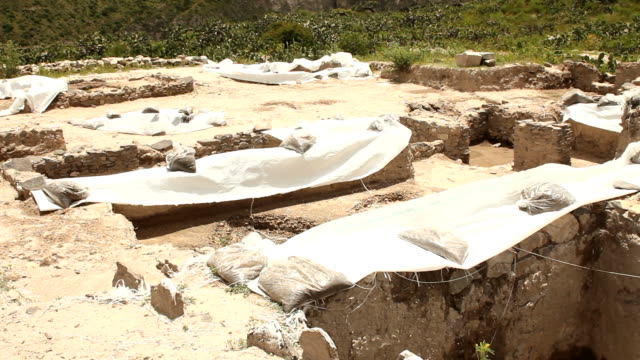 Archaeological excavations video