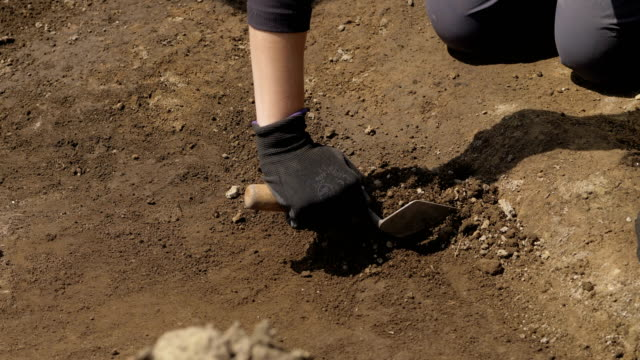 scavi archeologici.archeologo scava terreno - archeologia video stock e b–roll