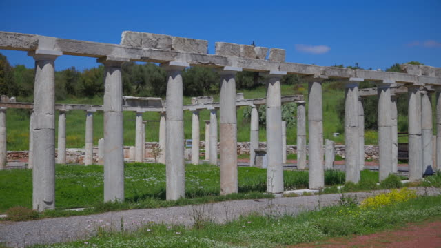 archaeological site of ancient messene , ruins of the palaestra (wrestling hall) , near kalamata , messina, messinia, peloponnes, greece - пелопоннес стоковые видео и кадры b-roll