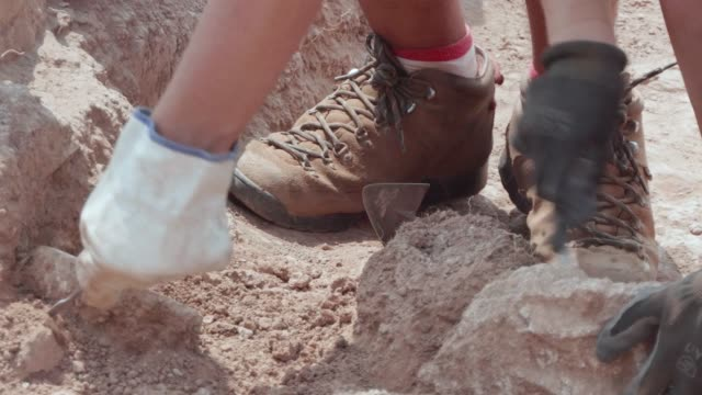 archaeologist working in a mediterranean archaeology field - archeologia video stock e b–roll