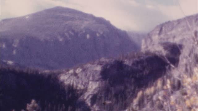 Archival wilderness footage video