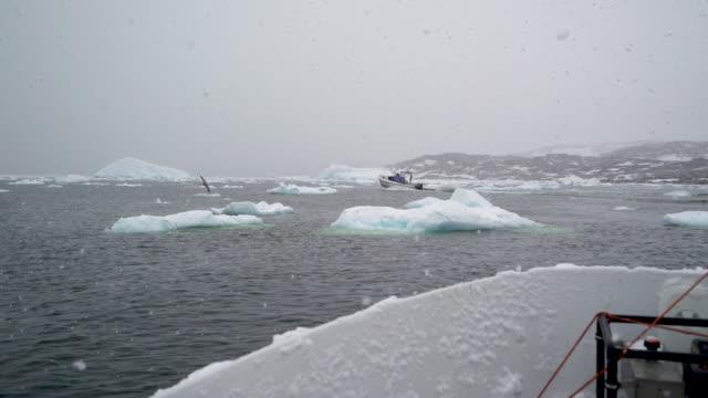 arctic massive iceberg - fiordo video stock e b–roll