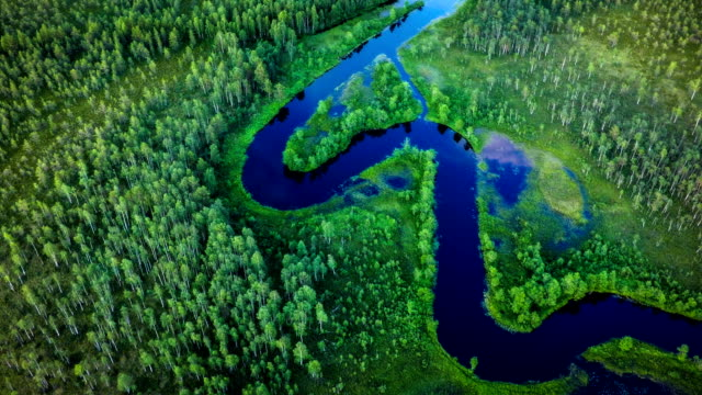 Areal shot of meandering river in boreal forest - Scandinavia Helicopter point if view on beautiful meandering river in the the green forest wilderness of Sweden - Scandinavia curve stock videos & royalty-free footage
