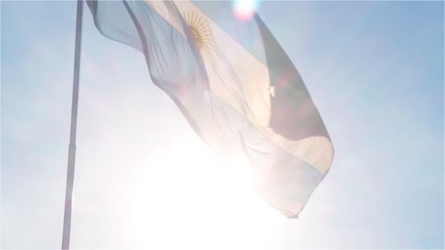 argentina flag against the sun. - bandiera dell'argentina video stock e b–roll