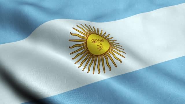 argentyna flaga bez szwu zapętlanie macha animacja - argentyna filmów i materiałów b-roll