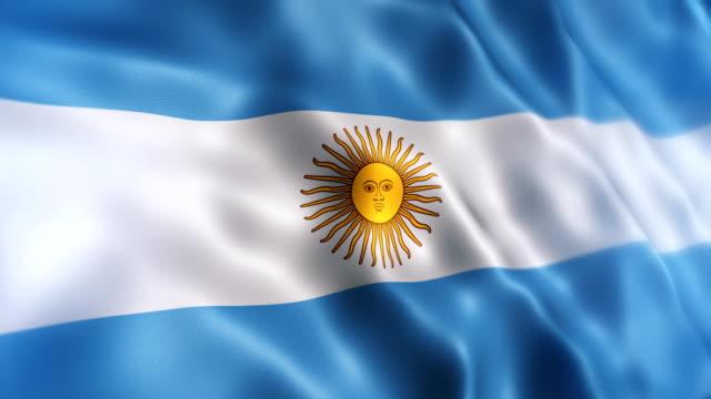 argentina flag - bandiera dell'argentina video stock e b–roll