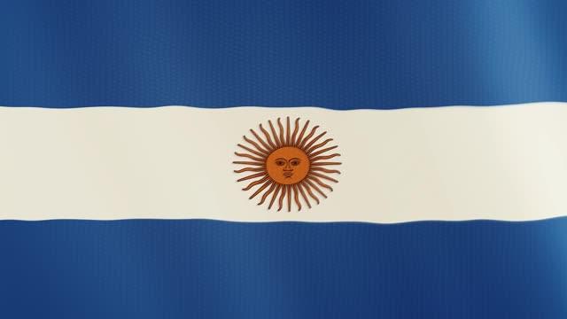 Animación que agita la bandera de Argentina. Pantalla completa. Símbolo del país - vídeo
