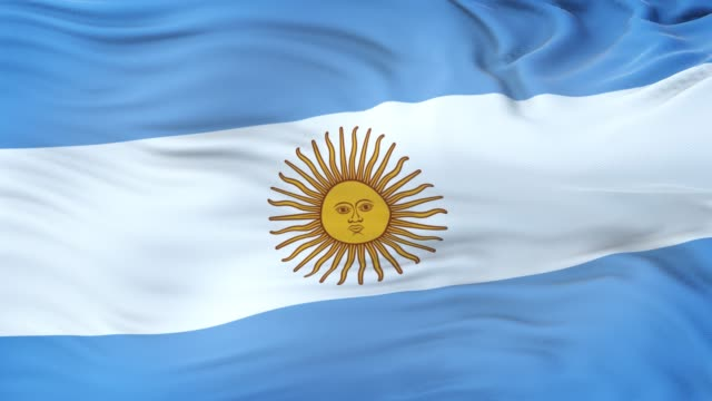 argentina flag waving in the wind with highly detailed fabric texture. seamless loop - bandiera dell'argentina video stock e b–roll