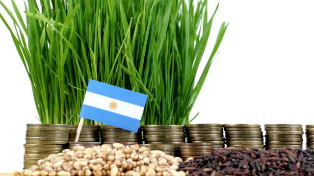 Bandera Argentina ondeando con pila de dinero monedas y pilas de trigo - vídeo