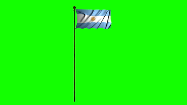 argentina waving flag green screen argentinian animation - bandiera dell'argentina video stock e b–roll