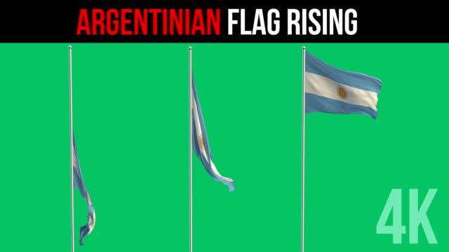 Bandera argentina  - vídeo
