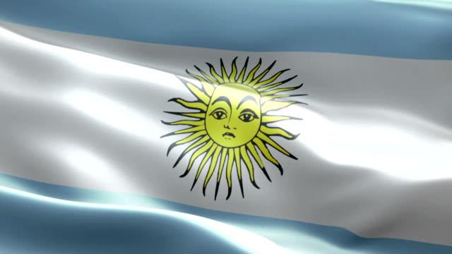 bandiera argentina - bandiera dell'argentina video stock e b–roll
