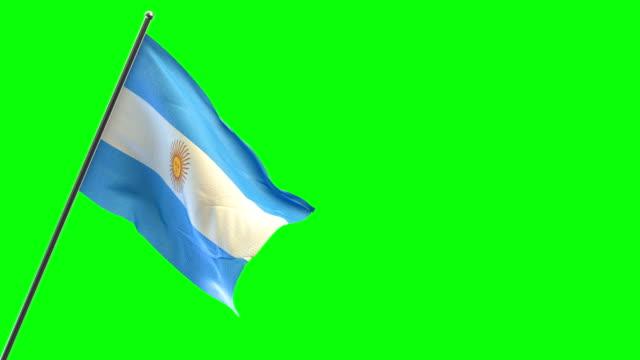 argentinian flag - bandiera dell'argentina video stock e b–roll