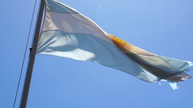 bandiera argentina che sventola - bandiera dell'argentina video stock e b–roll