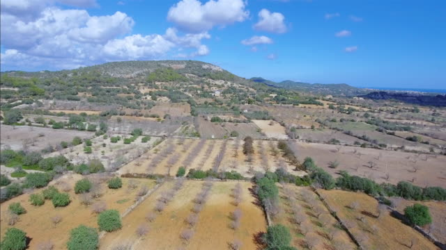 Arial View of Majorca plains near by Santuario de la Consolación - S'Alqueria Blanca - Santanyí / Balearic Islands, Spain video