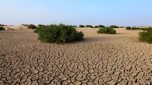vídeos de stock, filmes e b-roll de pântano áridas do deserto da tunísia/áfrica - erodido