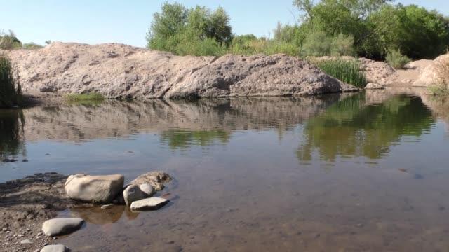 亞利桑那, 鹽河, 沿鹽河邊的一個小池塘與岩石和樹 - 池 個影片檔及 b 捲影像