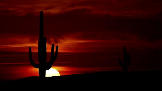 Arizona Tucson sunrise