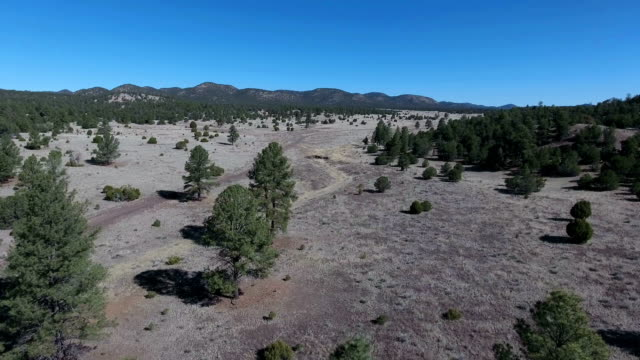 Arizona-New Mexico mountain aerial video