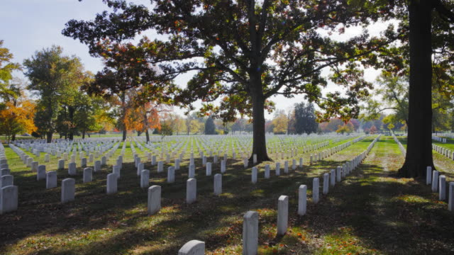 arlington cemetery during the fall video