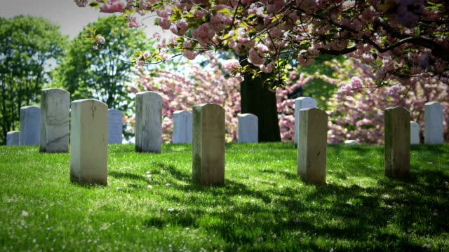 Arlington National Cemetery in Spring