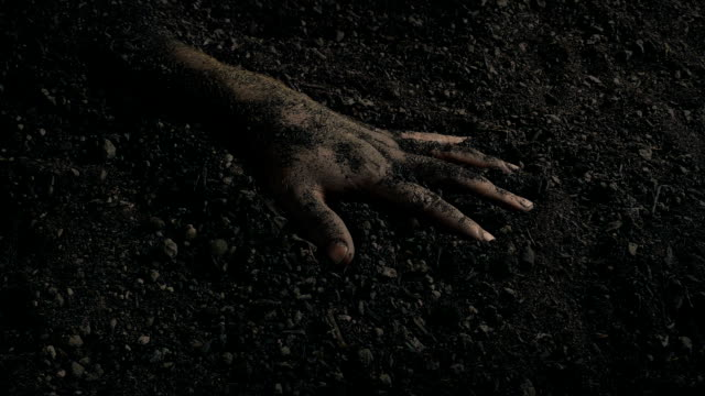 vidéos et rushes de bras enterré dans le sol mouvement shot - membre partie du corps