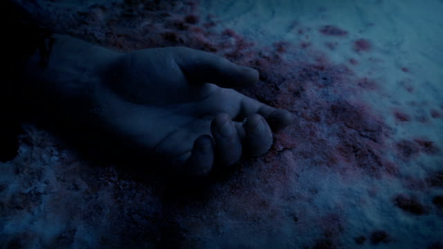 Arm Of Dead Person In The Snow At Dusk Dead body in the snow with blood covered hand at night dead animal stock videos & royalty-free footage