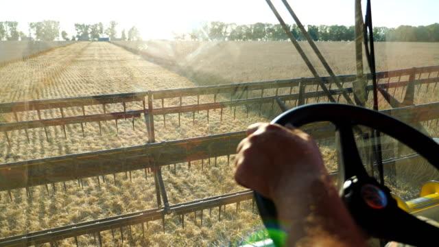 arm des landwirts halten lenkrad und kontrolle mähdrescher während der ernte. mann arbeitet auf dem feld auf seinem getreideernter. blick auf die malerische landschaft und den prozess des sammelns von gerste aus der innenkabine. - vollkorn stock-videos und b-roll-filmmaterial