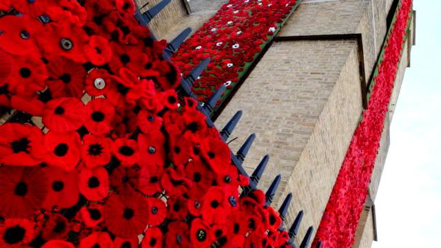 vídeos y material grabado en eventos de stock de venida del día del armisticio de ww1: cascada de ypres st georges iglesia amapola - amapola planta