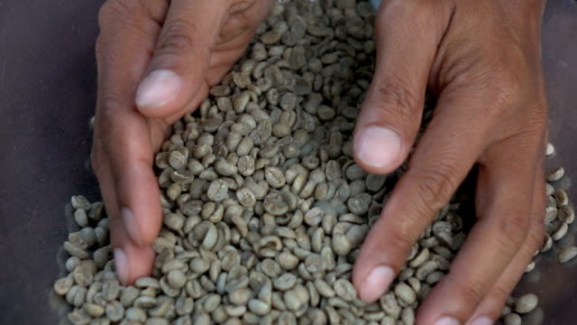 Aromatic roasted coffee beans,Hands testing quality in slow motion video