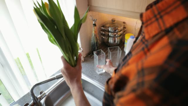 Arranging Tulips A man standing over his kitchen sink, cutting flowers and preparing them for a vase. tulip stock videos & royalty-free footage