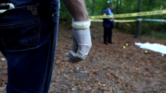 Arriving on the crime scene Two men, crime scene investigation, police and FBI doing their jobs, there is a dead body in the forest. detective stock videos & royalty-free footage