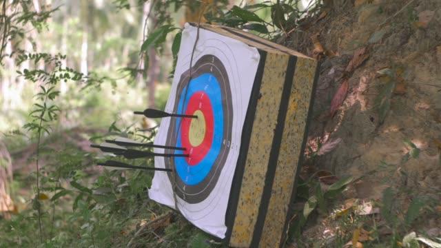 vidéos et rushes de touche la cible flèche - tir à l'arc