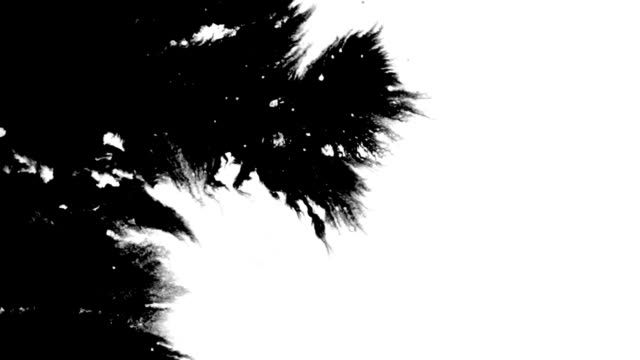 Art set Ink Splat Two variations of ink splats on white background. ink stock videos & royalty-free footage