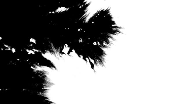 インク splat 1 - インク点の映像素材/bロール