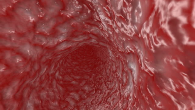 Artery Artery tunnel - 3d animation blood vessel stock videos & royalty-free footage