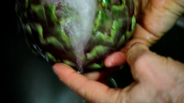 Artichoke Wash video