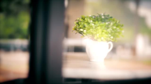 Royalty Free Empty Vase Hd Video 4k Stock Footage B Roll Istock