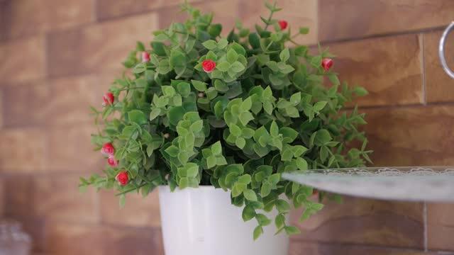vídeos de stock, filmes e b-roll de flor artificial em um vaso - estampa floral