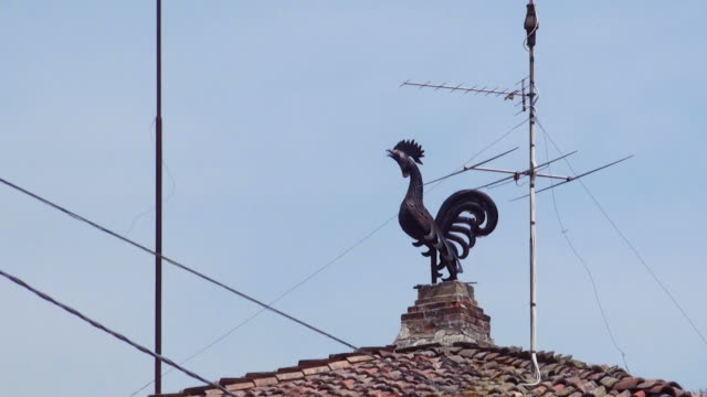 Artisan statue of the black metal rooster on the roof of the house video