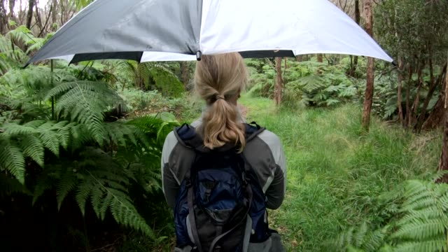 POV as woman walks into green forest, wearing backpack