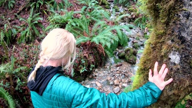 vidéos et rushes de pov femme se promène dans les forêts moussues, ruisseau coule en dessous - évasion du réel